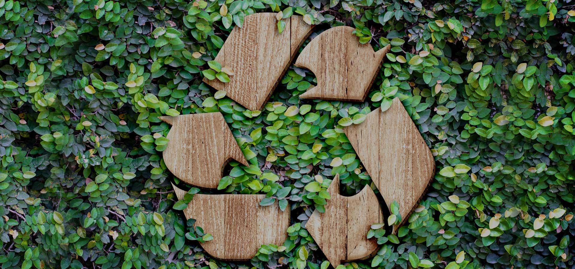 Imagen que describe el compromiso medioambiental sigfito.