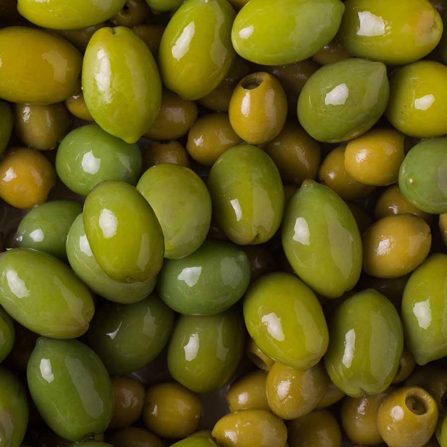 Recomendaciones de Agrotrapiche para mejorar la calidad del cultivo del olivar.