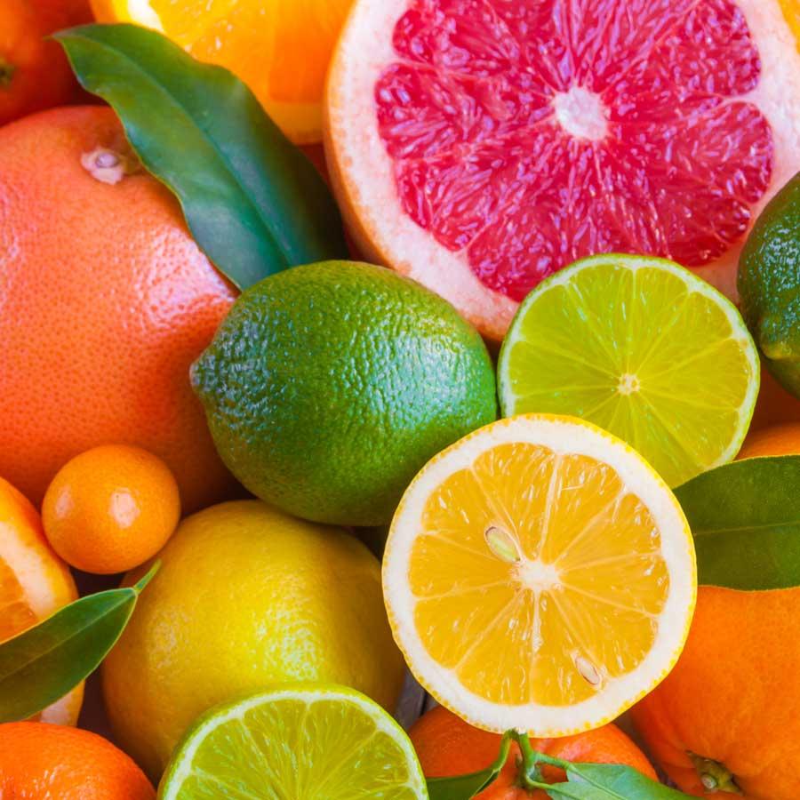 Recomendaciones de Agrotrapiche para mejorar la calidad del cultivo del cítrico.