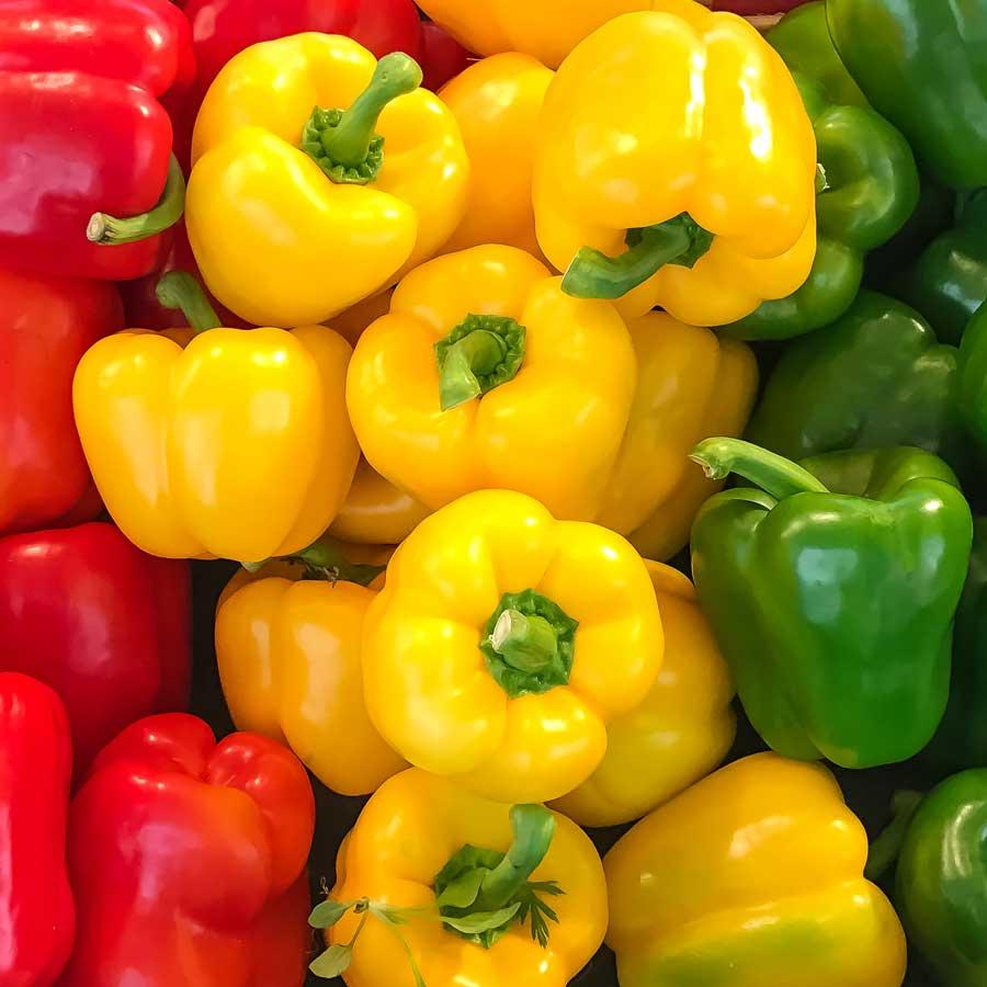 Recomendaciones de Agrotrapiche para mejorar la calidad del cultivo del pimiento.